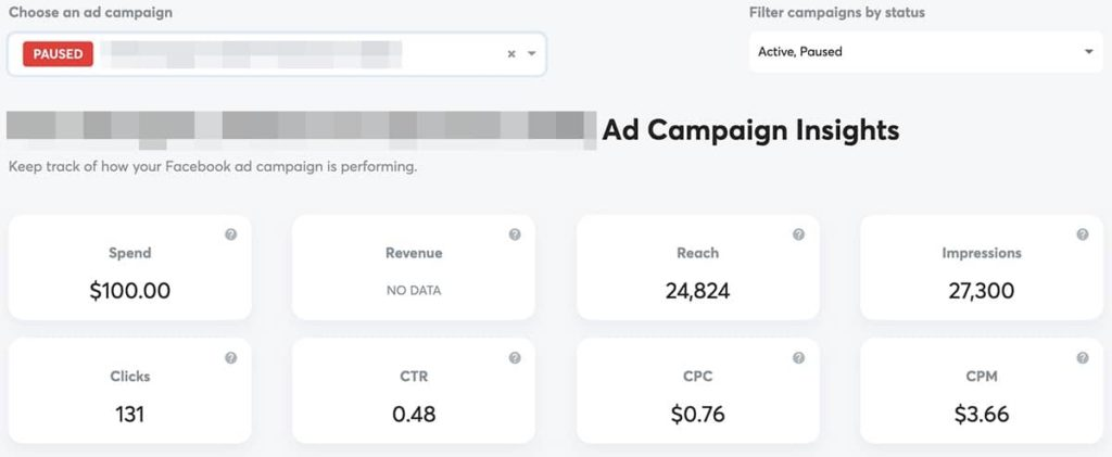 ad campaign insights from adsreports