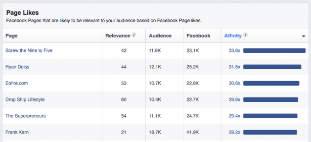 How to use Facebook Audience Insights tool
