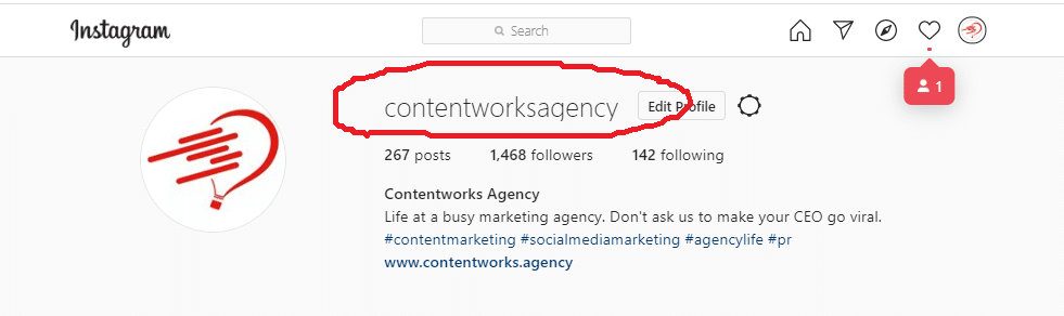example of instagram marketing with a professional business profile