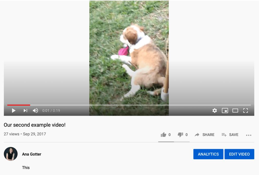 Analytics and Edit Video options
