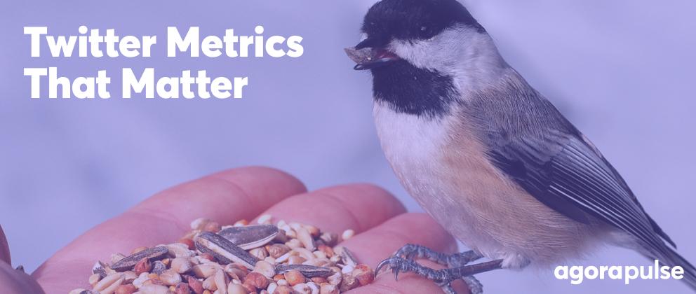 header image for twitter metrics article