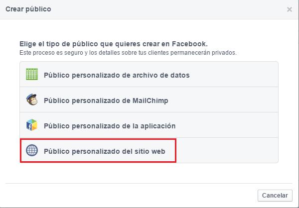 Haz clic en Público personalizado de sitio web.