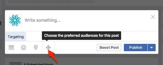 7. choose-prefered-audience