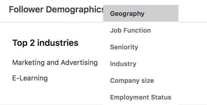 LinkedIn Analytics-- audience demographics